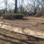 善福寺街道