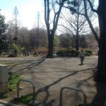 善福寺公園入り口