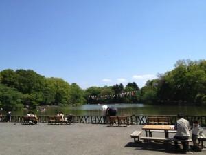 5月の善福寺公園