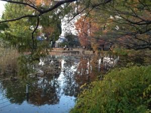 下の池に映る紅葉