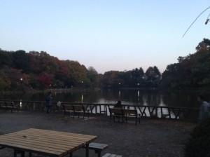 善福寺公園例のスポット