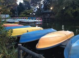 善福寺公園のボート