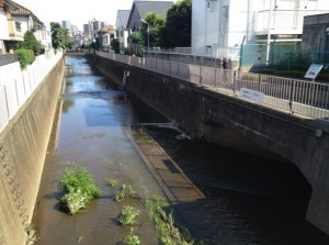 武蔵野市の下水合流地点