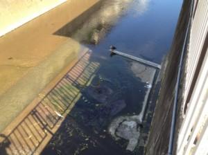 原寺分橋下の湧水
