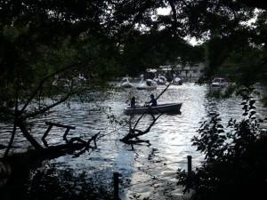 池が波立ったとき、キラキラ光を反射します