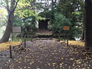 秋の市杵嶋神社