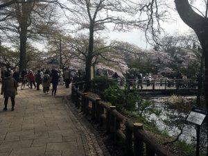 七井橋付近