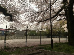 善福寺公園子供広場