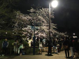 七井橋たもとのライトアップ