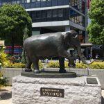 吉祥寺駅北口駅前広場にゾウのはな子像が登場