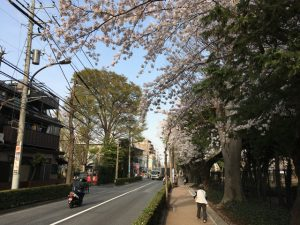 富士街道の方から入ります