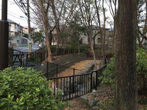 善福寺公園に新しく親水設備が