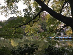 秋の公園の美しさ、作品の『不在』にも耐えます