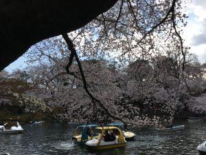 水上の大渋滞
