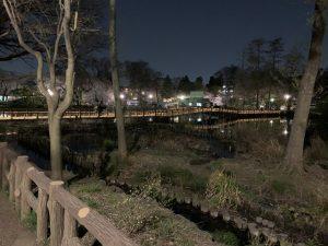 夜の七井橋